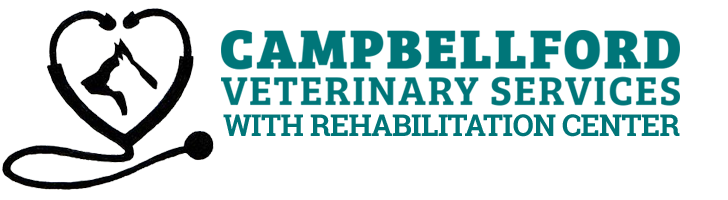Campbellford Veterinary Services